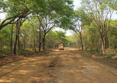 Projet Formation, Recherche, Environnement dans la Tshopo (FORETS)