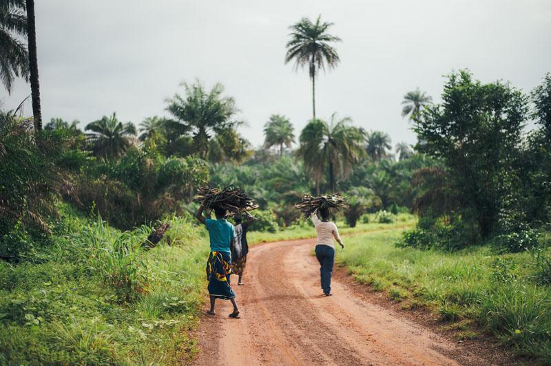Projet d'appui au STAREC (programme de stabilisation et de reconstruction des zones sortant des conflits armés) – Composante Santé